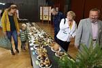 Výstava hub v přerovském klubu Teplo - září 2019