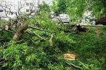 Bouře, která se prohnala v sobotu v noci Přerovem, napáchala škody v ulici Pod Skalkou v Předmostí. Hasiči zde nejprve odstraňovali strom, který spadl na osobní vůz, a potom ve stejné ulici odčerpávali vodu z výtahové šachty.