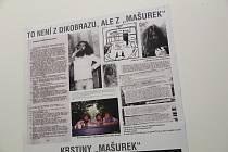 Přerov sametový - tak se jmenuje výstava ke 30. výročí sametové revoluce, která začala ve čtvrtek ve výstavní síni Pasáž. (Foto z instalace výstavy)