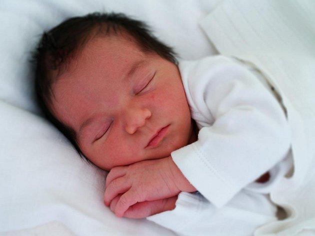 Šimon Štroncer, Drahotuše, narozený dne 6. října 2016 v Přerově, míra: 50 cm, váha: 3700 g