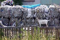 Město Kojetín jedná s firmou Raper o odklizení nebezpečně uskladněného papíru a plastů