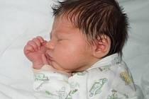Anetka Novosadová, Zákřov  narozena dne 8. března 2013 v Přerově, míra: 50 cm, váha: 3242 g