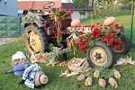 Zahrádkářské aranže před domy v Hradčanech na Přerovsku