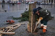 Kácení vánočního stromu na náměstí v Přerově