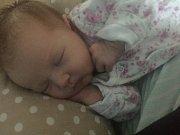 Stella Olivia Piňosová, Přerov, narozena dne 14. června v Přerově, míra 51 cm, váha 3320 g