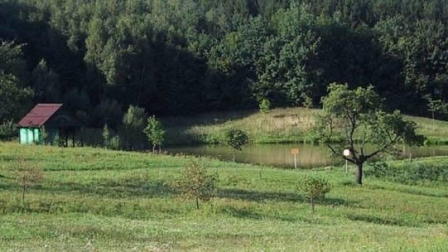 Rybník pod obcí Bezuchov