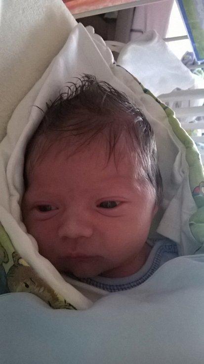 Antonín Pavelka, Hranice, narozen dne 18. října 2016 ve Valašském Meziříčí, míra: 51 cm, váha: 3600 g