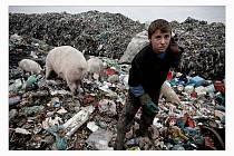 Mezi albánskými dětmi, které pracují na skládce, nebo v zástupech Palestinců na checkpointu v Betlémě našel přerovský fotograf Martin Holík silná témata. Za cyklus svých snímků vyhrál jednu z cen v soutěži Czech Press Photo.