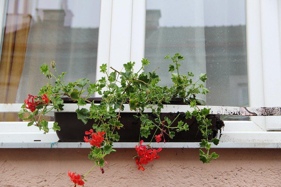 Exploze v pondělí večer poničila auto, zaparkované v Sušilově ulici v Přerově. Podle policie umístil neznámý pachatel na auto nástražný výbušný systém - předmět, který z něj odletěl, zasáhl i květináč na okně protější budovy Dětského domova.
