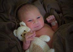 Karolína Štěpánková, Přerov, narozena dne 22. března v Přerově, míra 54 cm, váha 4200 g