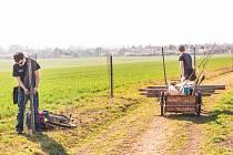 Do výsadby stromů na Ovocné stezce Pastviska v Přerově se před lety pustili dobrovolníci. Soud teď rozhodl, že mají být stromy odstraněny.
