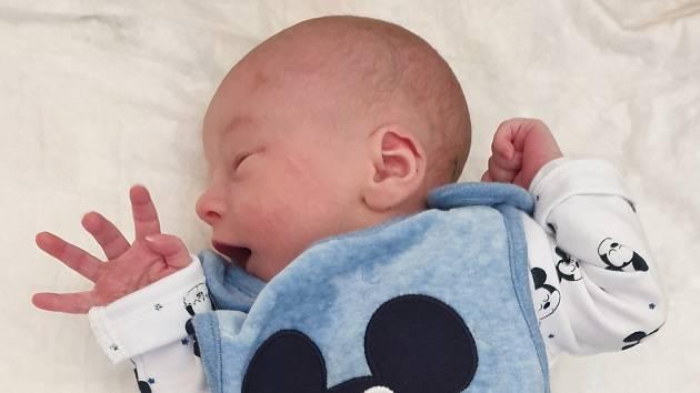 Tadeáš Zoubek, Kokory, narozen 30. září 2019 v Přerově, míra 46 cm, váha 2 696 g