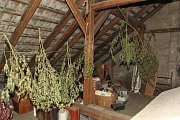 Drogy, které našli kriminalisté při dopadení tří pachatelů na Přerovsku, byly nalezeny i na netradičních skrýších - na mražáku nebo mezi harampádím.