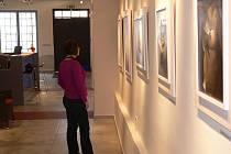 V Galerii muzea v Přerově jsou k vidění olejomalby autora Petra Špačka