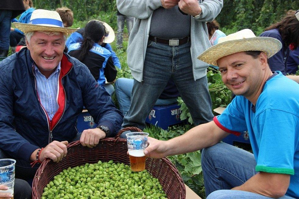 Česání chmele pro nové pivo se účastnil i hokejový trenér Miloš Říha.