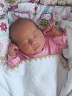 Viktorie Bajerová, Olomouc, narozena dne 2. června v Přerově, míra 49 cm, váha 3214 g
