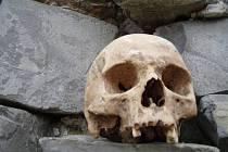 Lebka nalezená v Tovačově. Ilustrační foto.