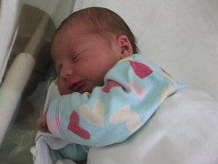 Petr Dostalík, Přerov, narozen dne 23. dubna vPřerově, míra 49 cm, váha 3150 g