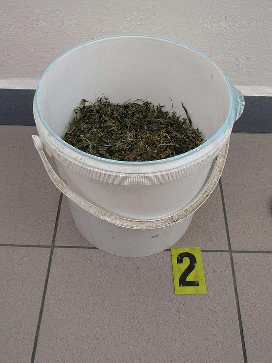 Přerovští kriminalisté našli při domovní prohlídce u muže, který byl obviněn z distribuce drog, na 288 gramů sušené rostliny konopí setého.