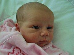 Michaela Janečková, Horní Nětčice, narozena dne 29.12.2014 v Přerově, míra: 49 cm, váha: 3.610g