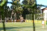 Základní škola v Dřevohosticích