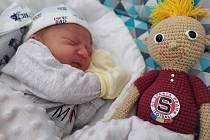 Filip Máca,Hranice, narozen 29. října 2019 v Přerově, míra 49 cm, váha 3186 g
