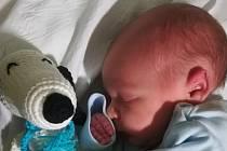 Matyáš Schlehr, Beňov, narozen 11. března 2019 v Přerově míra 46cm, váha 2832g