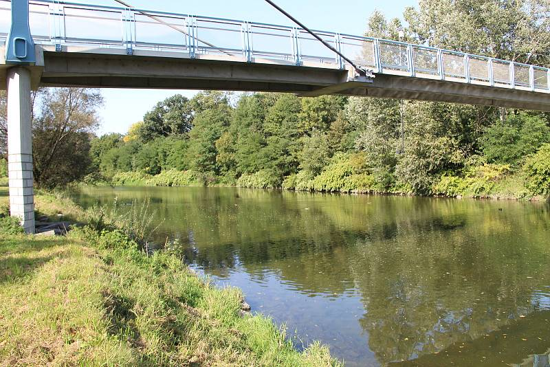 Řeka Bečva v Přerově v úterý 22. září 2020. Ryby na toku otrávila neznámá látka
