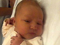 Nela Dosedlová, Horní Moštěnice, narozena dne 4. listopadu 2012 v Přerově, míra: 49 cm, váha: 3 520 g