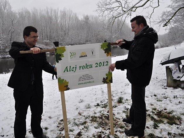 Rybářská alej v Přerově vyhrála v anketě  Alej roku 2012