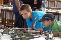 Davy návštěvníků zavítaly v sobotu do Tovačova, kde se konal už čtvrtý ročník modelářské výstavy. Lidé mohli obdivovat na pět stovek exponátů a součástí byl také bohatý doprovodný program se statickými ukázkami vojenské historické techniky.
