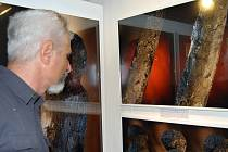 Unikátní výstava velkoformátových fotografií Martina Frouze, kterou doplňuje i šest originálních děl z období paleolitu, v prostorách Přerovského zámku