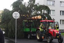 Cesta vánočního stromu na přerovské náměstí TGM