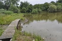 Rybník Hliník v Předmostí