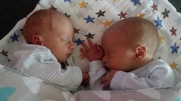 Adam Štěpán, narozen dne 26. května, míra 42 cm, váha 2114 g a Filip Štěpán, narozen dne 26. května, míra 48 cm, váha 2684 g, oba narozeni v Přerově, Lipník n/B,