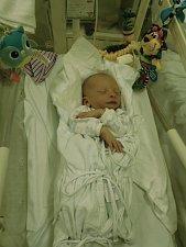 Matěj Kohn, narozen 10. listopadu 2017, míra 50 cm, váha 3080 g