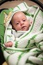 Adam Silný, Potštát, narozen 22. září 2016 vOlomouci, míra 40cm, váha 1400 g