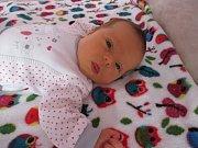 Mia Horáková, Hranice, narozena 1. října 2017 ve Valašském Meziříčí, míra 50 cm, váha 3430 g