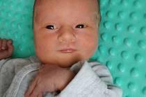 Dominik Navrátil, Dřevohostice , narozen 11. ledna 2020 v Přerově, míra 49 cm, váha 3638 g