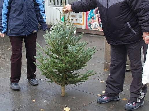 Prodej vánočních stromků v Přerově