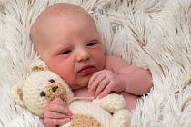 Laura Indrova, Přerov narozena 12. listopadu 2015 v Přerově, míra: 49 cm, váha: 3022 g