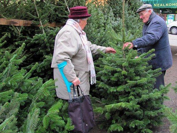 Prodej vánočních stromků vPřerově