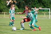 O pohár 1. FC Viktorie Přerov a ZŠ Za mlýnem bojovalo v Přerově 32 elitních družstev starších přípravek z celé republiky.