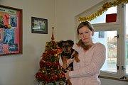 I letos pořádá Přerovský a hranický deník sbírku pro pejsky a kočičky z Útulku pro zatoulaná zvířata Dr. Matinové v Přerově. Lidé mohou nosit granule, deky, ale i hračky nebo misky do redakce v ulici Palackého 22 v Přerově.