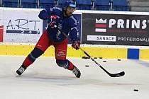 Hokejová reprezentace se poprvé pod vedením trenéra Miloše Říhy sešla v Přerově. Michal Moravčík.