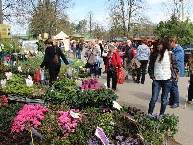 Druhý ročník výstavy květin a rostliv v areálu přerovského výstaviště nalákala nejen zahrádkáře.