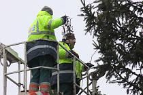 Zdobení vánočního stromu na náměstí T. G. Masaryka v Přerově