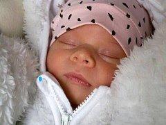 Melánie Kleinová, Přerov narozena dne 26. ledna 2016 v Přerově, míra: 51 cm, váha: 3562 g