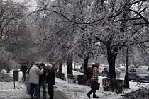 Ledová kalamita a inverze v Přerově - středa 3. 12. 2014 - záběry jsou ze Žižkovy ulice a třídy 17. listopadu