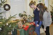 Tradiční výstava Vánoční salon je až do soboty k vidění ve Středisku volného času Atlas v Žižkově ulici v Přerově. Tentokrát se ale nepřesune do malého sálu Městského domu, jak byli lidé zvyklí.
